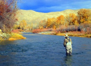 Beautiful scenery while fly fishing on the Salmon River