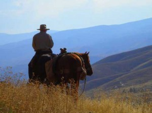 Horse back trail rides while on your Salmon River adventure