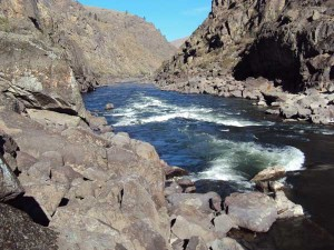 Aggipah's Idaho rafting trips see Bodacious Bounce Rapid on the Lower Salmon.