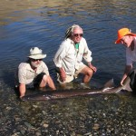 Great day fishing in Idaho with Aggipah Fishing guides - Nice sturgeon!